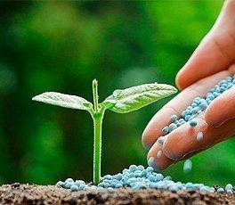 Fitosanitarios y Fertilizantes